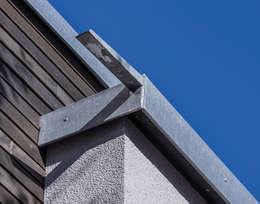 Entwässerung des begrünten Flachdachs erfolgt über schlichte Speier, so stören keine Fallrohre die gradlinige Außenansicht.: moderne Häuser von KitzlingerHaus GmbH & Co. KG