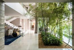Residência Nova Lima : Jardins de inverno modernos por Andréa Buratto Arquitetura & Decoração