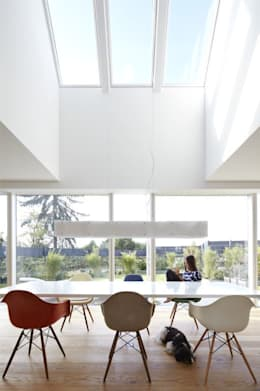 modern Dining room by Falke Architekten