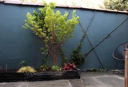 Jardins asiáticos por Constans Paysage
