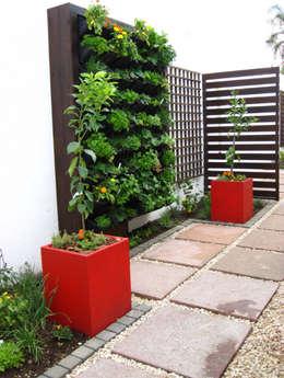 Jardines de estilo moderno por Young Landscape Design Studio