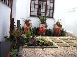 modern Garden by Young Landscape Design Studio