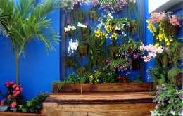 Jardines de estilo rústico por Filhas do Ar