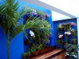 Jardines de estilo  por Filhas do Ar