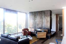 Livings de estilo industrial por Contrafuerte Arquitectura