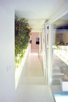 Una villa contemporanea costruita attorno al verde a palermo for Amapola jardin de infantes palermo