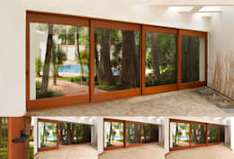 Windows & doors  by Lens Puertas de Aluminio.