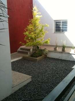 Jardins modernos por Development Architectural group