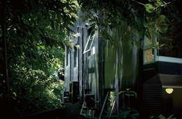 紫色油漆讓周圍樹影的婆娑搖曳微映在牆體上,整棟屋宅竟融於綠樹中了。:  房子 by 本晴設計