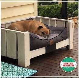 Ideas para tu mascota - Escaleras para perros pequenos ...