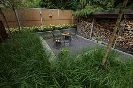 Сады в . Автор – BMT