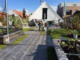 modern Garden by studio suit