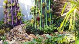 modern Garden by Gorgeous Gardens