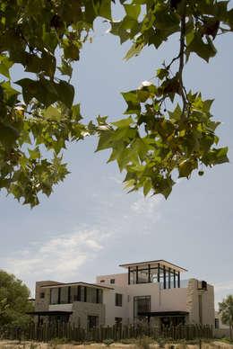 Casa Ventanas SMA: Jardines de estilo moderno por Boué Arquitectos