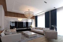 modern Living room by EZGİ AYDOGDU İçmimarlık Danışmanlık ve İnşaat Hiz.