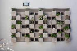 Jardines de estilo moderno por Garnerone + Ramos Arq.