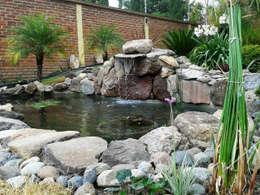 Jardines de estilo topical por RIVERA ARQUITECTOS