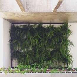 Jardines de estilo minimalista por INTRIO