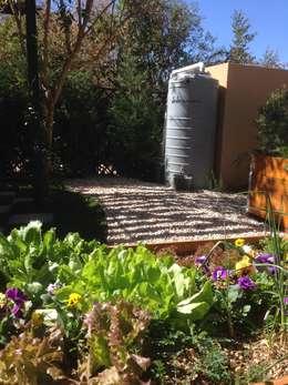 Rain Havesting: industrial Garden by Acton Gardens