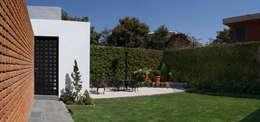 Jardín : Jardines de estilo moderno por MAAS Arquitectura & Diseño