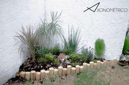 Plantas de sombra: Jardines de estilo moderno por Axonometrico