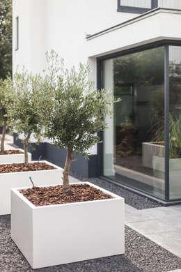 Сад  в . Автор – Bob Romijnders Architectuur & Interieur