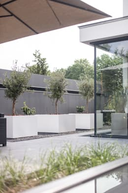 modern Conservatory by Bob Romijnders Architectuur & Interieur