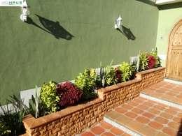 Terrasse de style  par OmaHaus Arquitectos