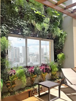 Jardim vertical da cobertura: Jardins modernos por Marcia Addor Interiores
