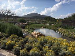 Vista del lago desde la entrada: Estanques de jardín de estilo  por Hábitas