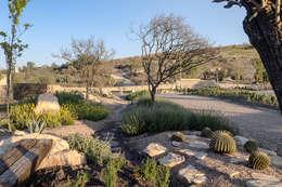 Jardines de acceso al fraccionamiento: Jardines de piedra de estilo  por Hábitas