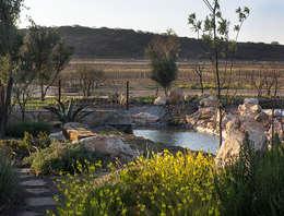 Vista al lago desde la entrada: Jardines de estilo rural por Hábitas