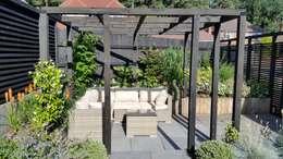 modern Garden by Linsey Evans Garden Design
