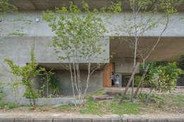 外観 玄関 駐車スペース: 武藤圭太郎建築設計事務所が手掛けた家です。