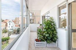 Apartamento T2+1 | Alojamento Local: Jardins de Inverno modernos por João Boullosa