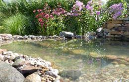 بركة مائية تنفيذ Gartenarchitekturbüro Timm