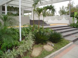 Hospital Angeles del carmen Guadalajara Acceso: Jardines de estilo topical por BARRAGAN ARQUITECTOS