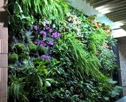 JArdin Vertical : Paisajismo de interiores de estilo  de GreenerLand. Arquitectura Paisajista y Tematización