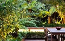 modern Garden by MyLandscapes Garden Design