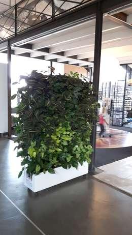 Mobile groenewand bij ZienXL Waarland:  Binnenbeplanting door Degroenewand.nl