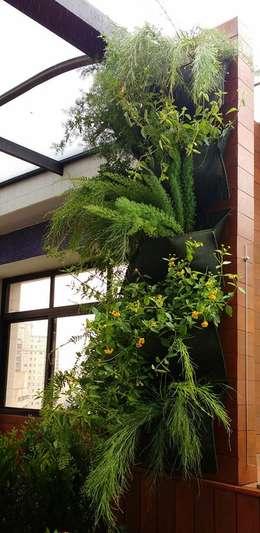 Jardim Vertical e Painel Cumaru: Piscinas de jardim  por Amaria Gonçalves - Design Paisagismo