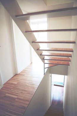 Distribuidor: Escaleras de estilo  de CANTÓ ARQUITECTOS