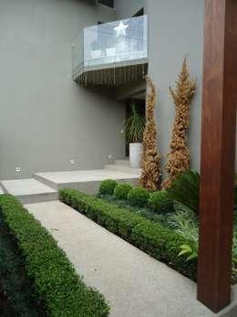 BV: Jardins modernos por Camila Tiveron Arquitetura