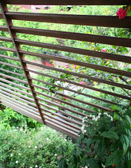 Cây xanh ở mặt tiền giúp điều hòa không khí, đem tới cảm giác tươi xanh.:  Cửa sổ by Công ty TNHH Thiết Kế Xây Dựng Song Phát