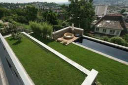 Einfamilienhaus Stuttgart: moderner Garten von blocher partners