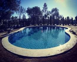 Garden Pool by Sıdar Pool&Dome Yüzme Havuzları ve Şişme Kapamalar