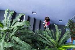 Detalle de escalinata: Escaleras de estilo  por Bojorquez Arquitectos SA de CV