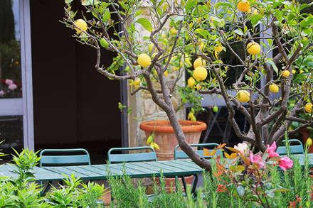 Gartendesign: Mediterraner Garten Von Phillys Interior Design