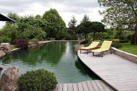 بركة مائية تنفيذ Kirchner Garten + Teich GmbH