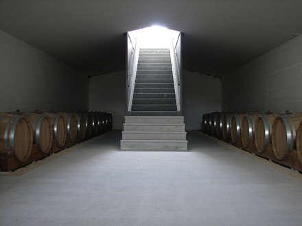TAVERNA WINERY: Cantina in stile in stile Minimalista di ONSITESTUDIO
